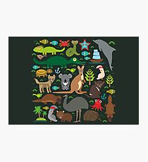 Funny australian animals Photographic Print