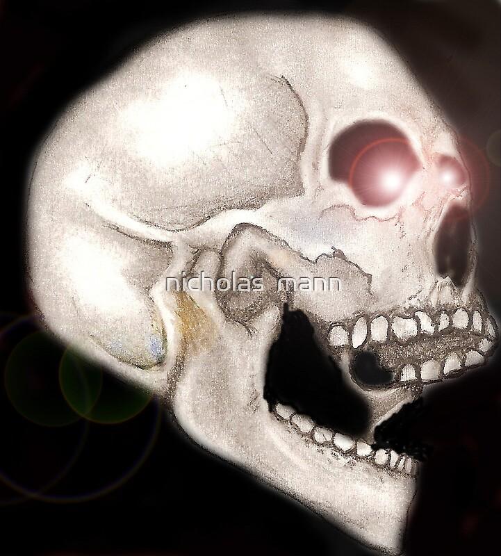 skull by nicholas  mann