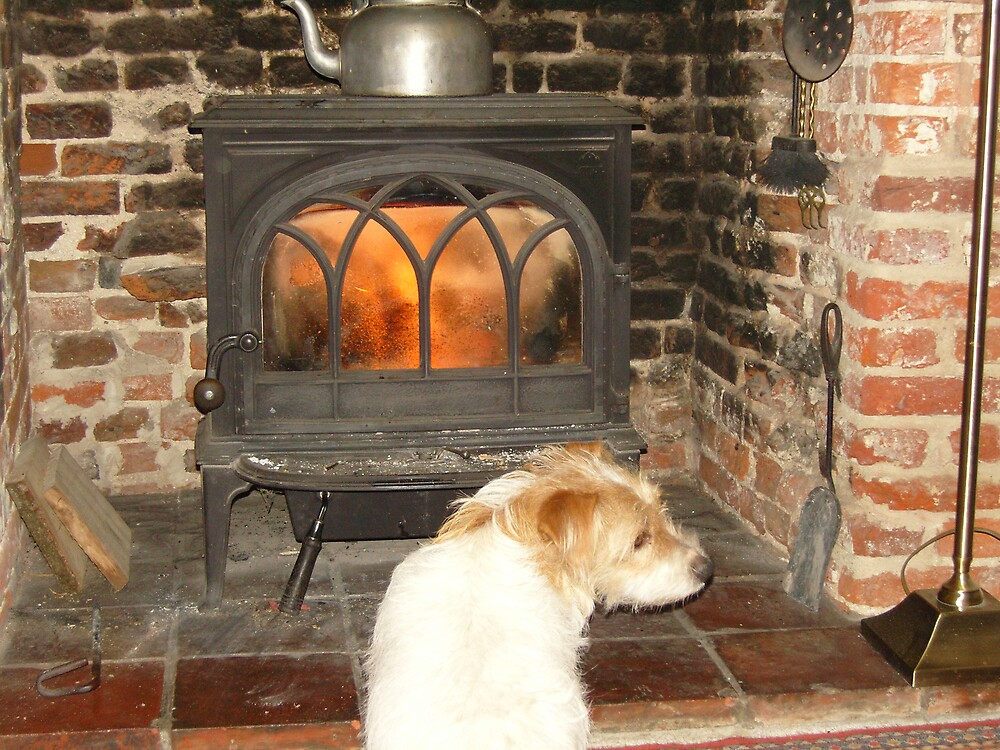 fireside jack russell by jeanmarie