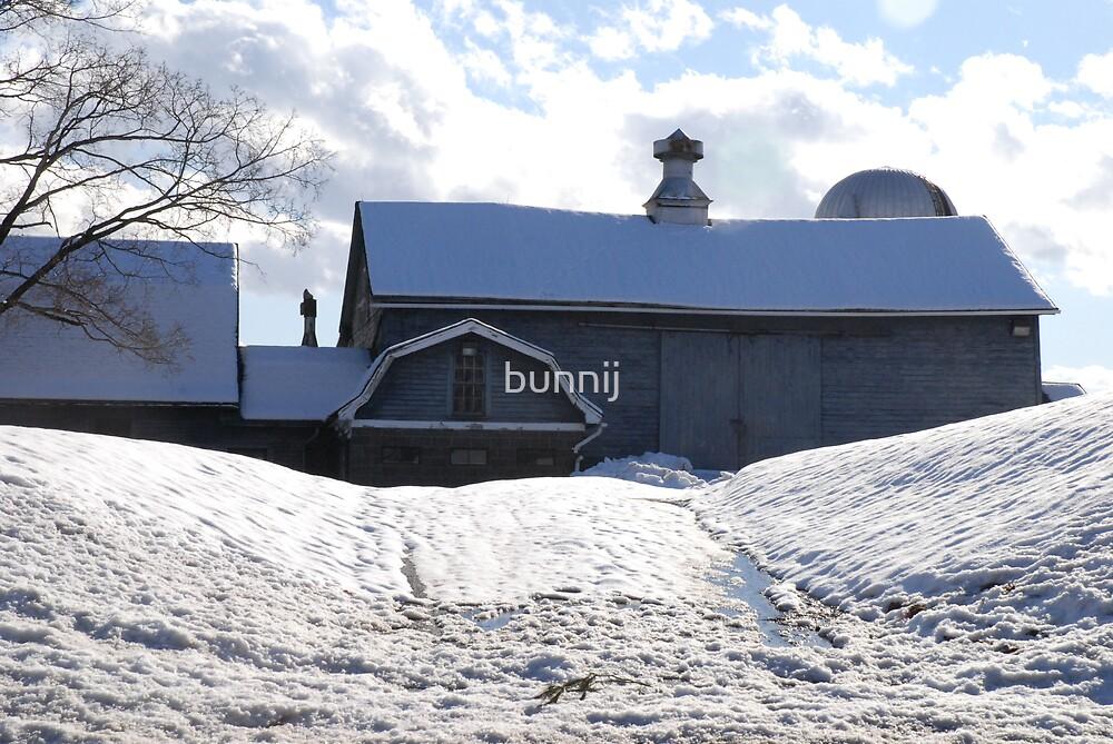 Wintery Barn by bunnij