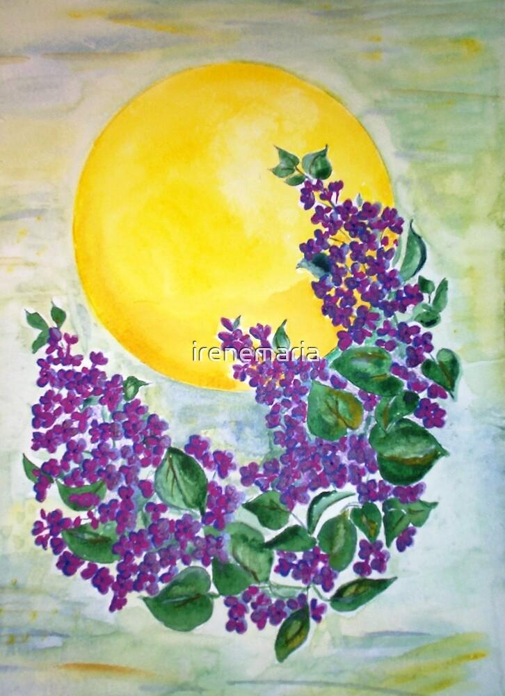 Midsummernight lilacs by irenemaria