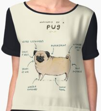 Anatomy of a Pug Women's Chiffon Top