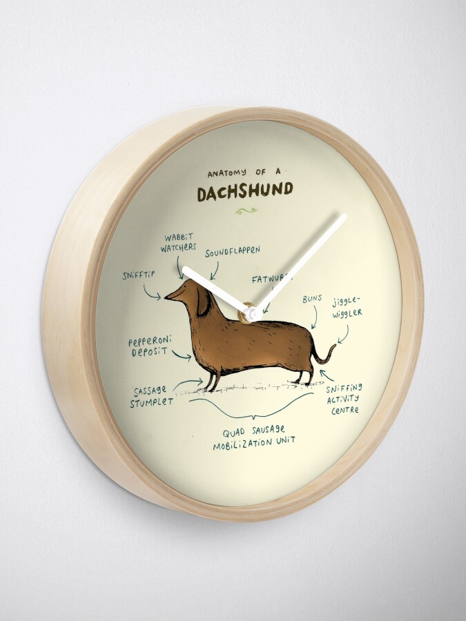 Alternate view of Anatomy of a Dachshund Clock
