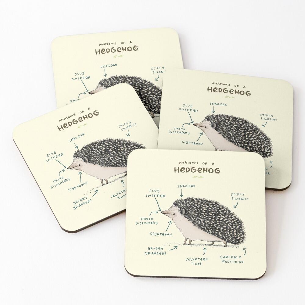 Anatomy of a Hedgehog Coasters (Set of 4)