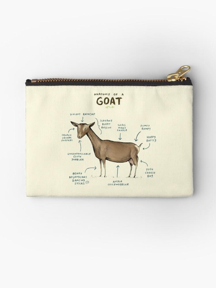 Anatomy of a Goat\