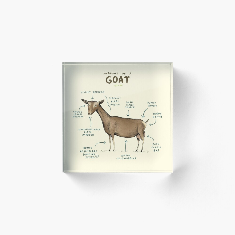 Anatomy of a Goat Acrylic Block