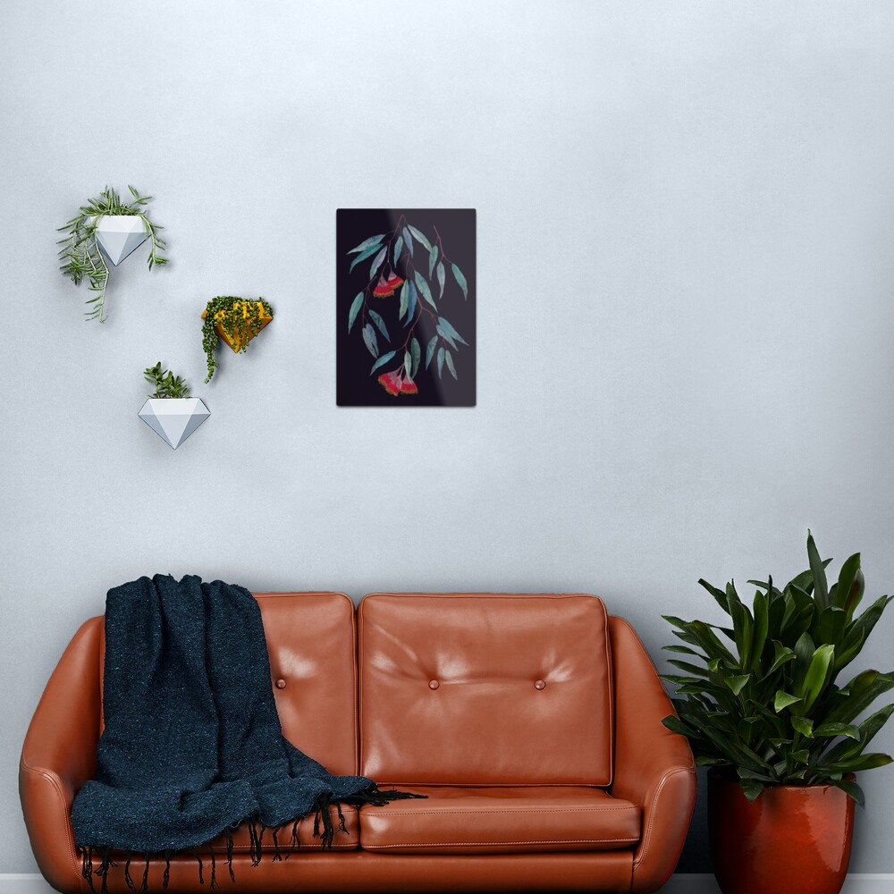 Eucalyptus leaves and flowers on dark Metal Print