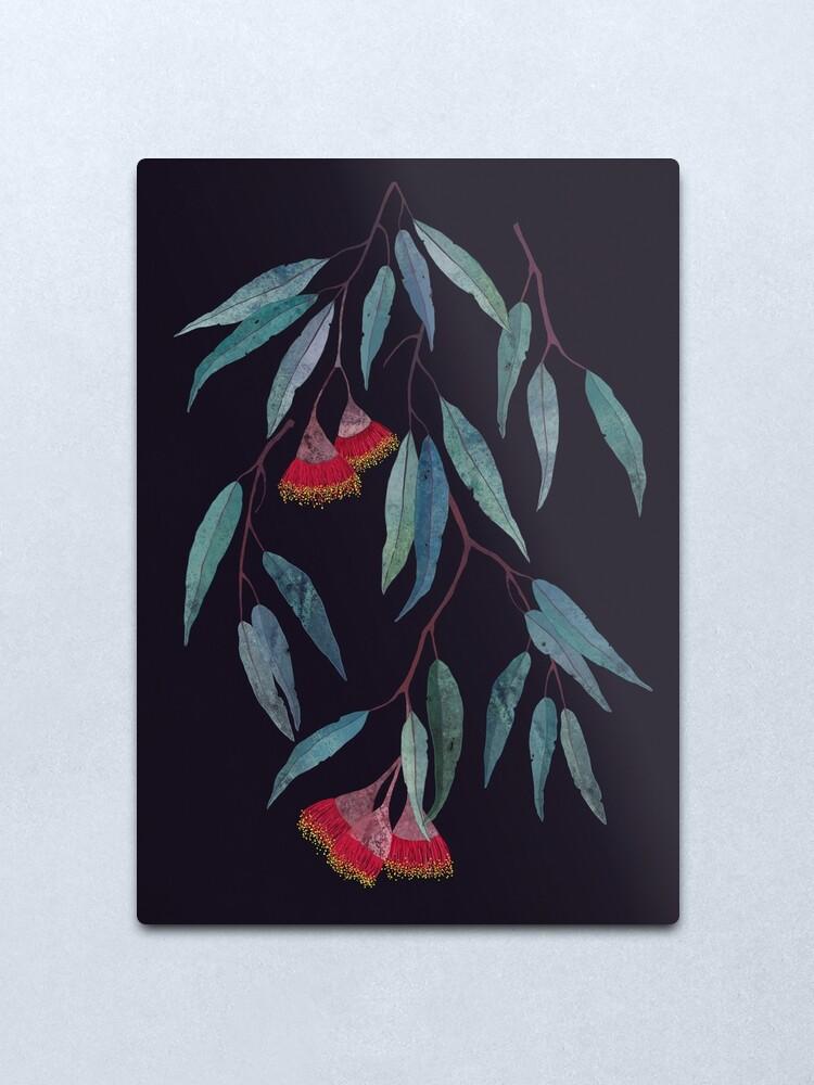 Alternate view of Eucalyptus leaves and flowers on dark Metal Print