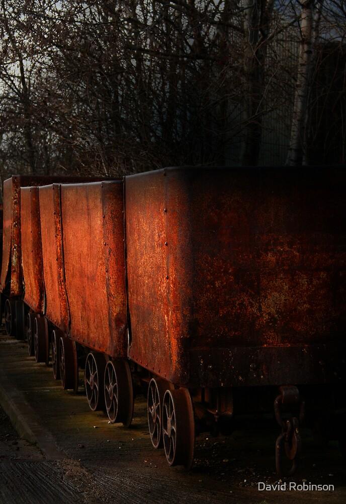 Rusty coal trucks by David Robinson