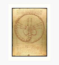 FaceHugger of Vitruvius Art Print