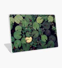 Lily Pads Laptop Skin