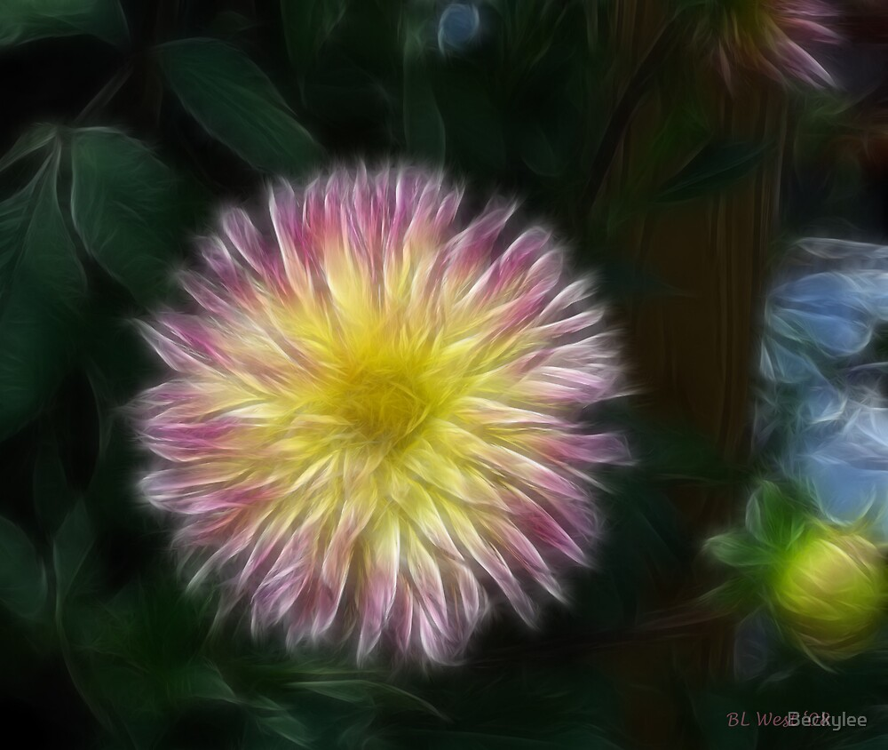 The Dahlia 2 by Beckylee