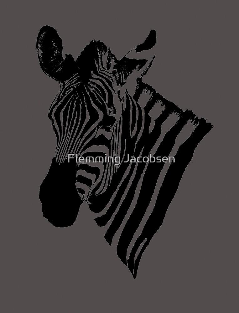 zebra poster by Flemming Jacobsen