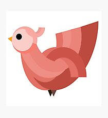 Red Hen, Vector Design Photographic Print