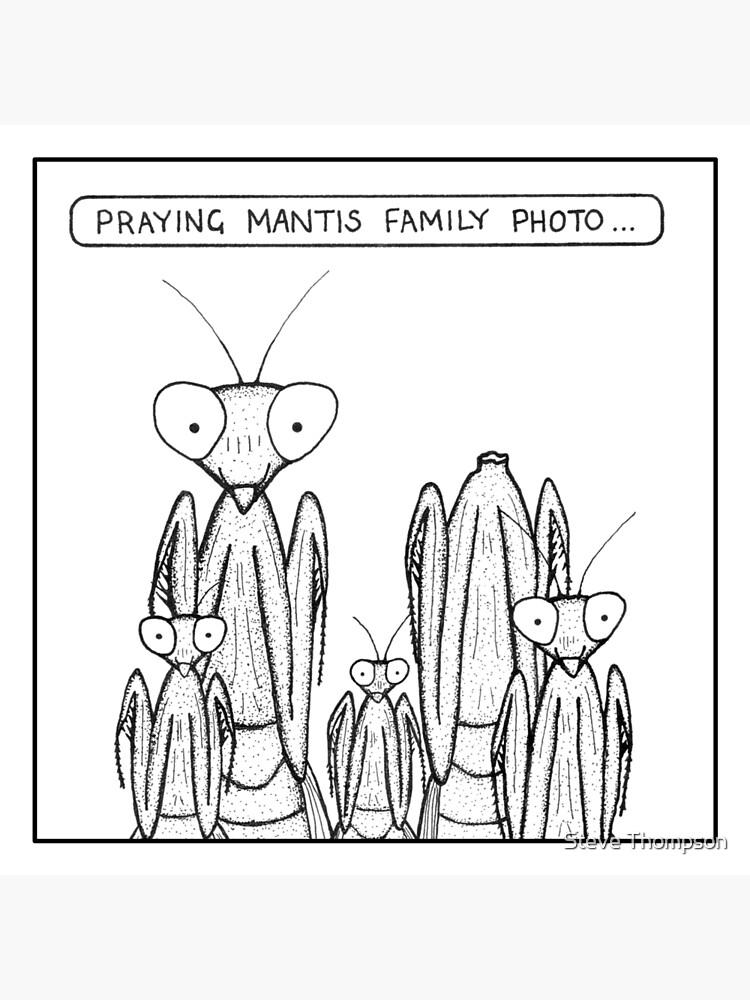 Praying Mantis family photo by stevet3214
