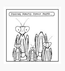 Praying Mantis family photo Photographic Print