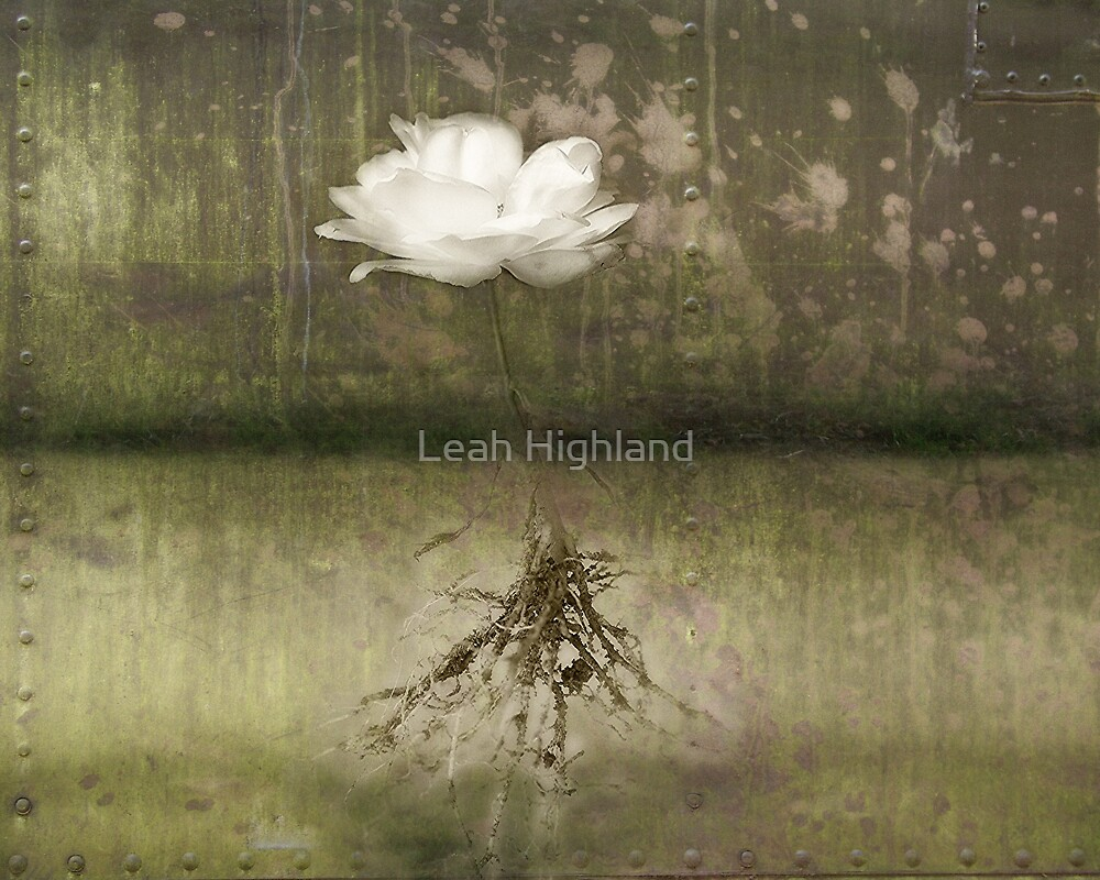 It All Began by Leah Highland