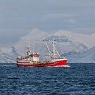 363 Maron GK-522 by Photos by Ragnarsson