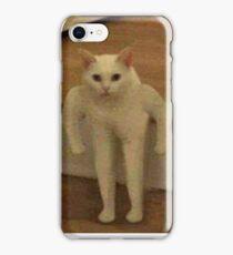 Defenestrating Mushu iPhone Case/Skin