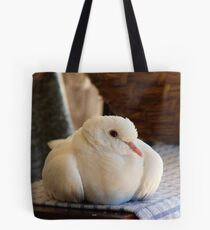 Will You Read Me A Story? - White Ringneck Dove - NZ Tote Bag