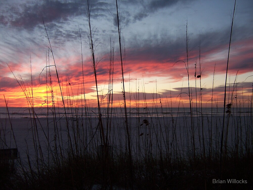 Sunset in January by Brian Willocks