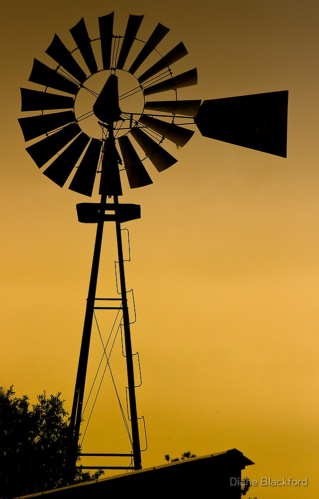 Golden Windmill by Diane Blackford