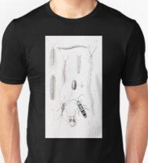 De gelede dieren Snellen Van Collenhoven Samual Constant 1868 007 Unisex T-Shirt