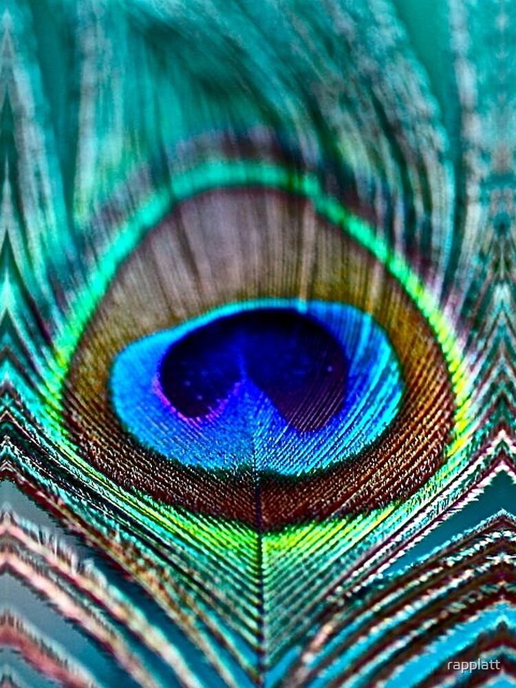 Peacock Feather by rapplatt