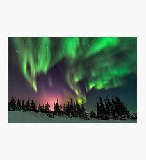 Aurora Fotodruck