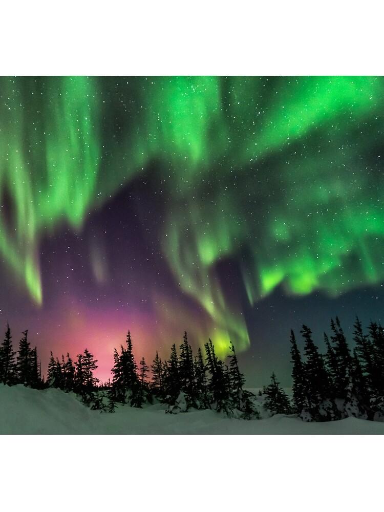 Aurora by hussinb