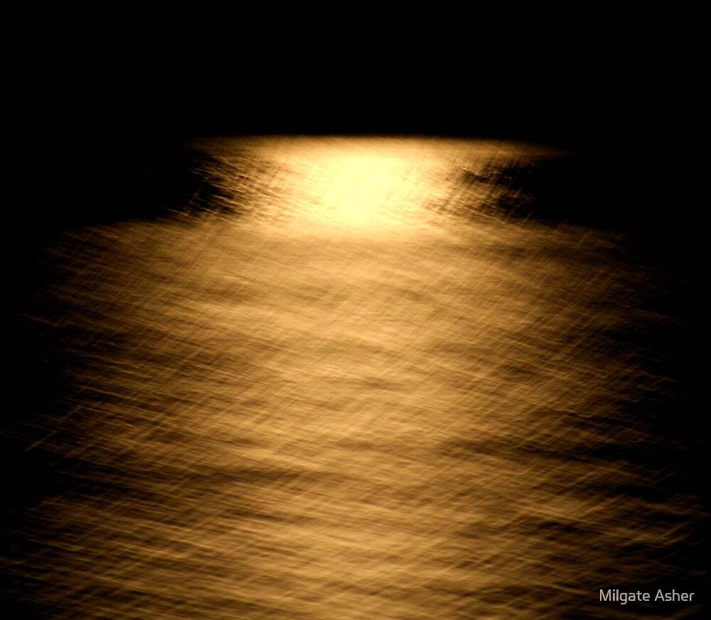Moonlight Shimmer by Milgate Asher