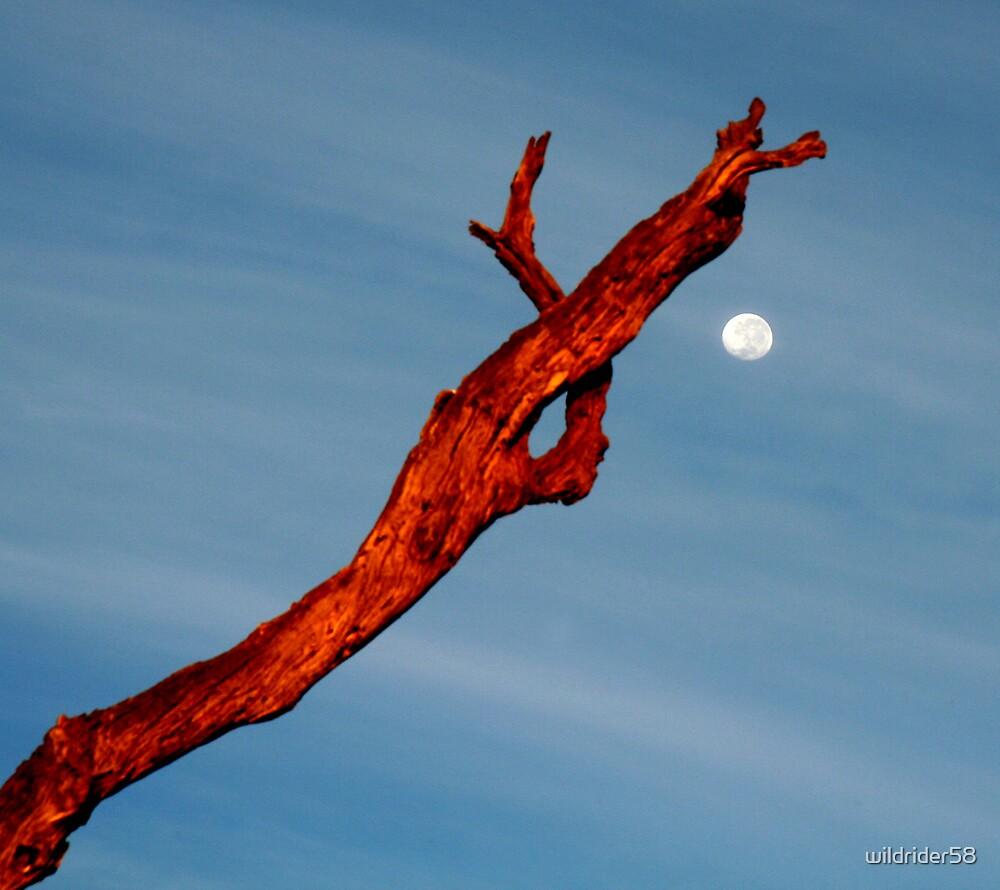 Sun Setting - Moon Rising by wildrider58