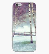 Two birches iPhone Case
