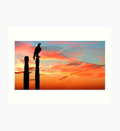 Perched Eagle at Sunset Art Print