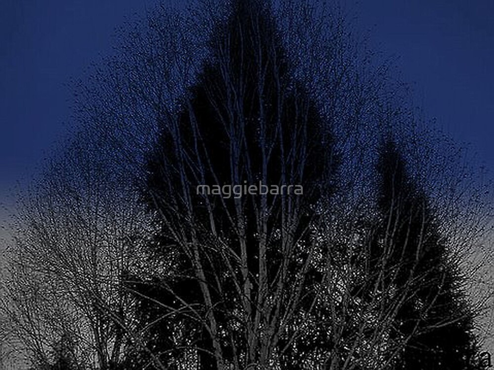 Trees by maggiebarra