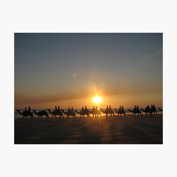 """""""Those Camels"""" Cable Beach,West.Aust Photographic Print"""