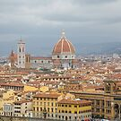 View of Florence from a hilltop Above by dbvirago