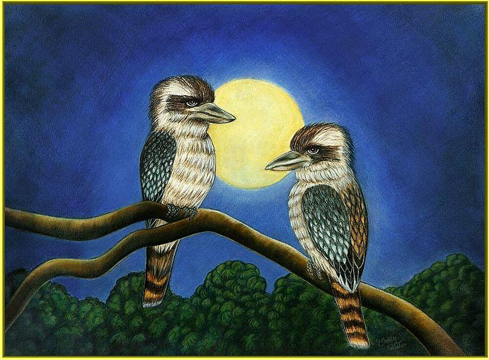 Kookaburra;s Out on a limb. by EmilyWinter