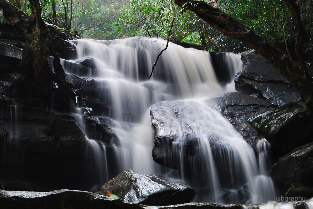Waterfall from Somersby Falls 11 by wbgraphy