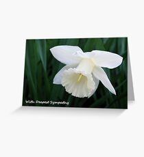 White Daffodil Sympathy Card Greeting Card