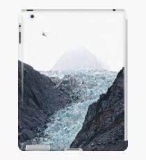 Fox Glacier 2 iPad Case/Skin