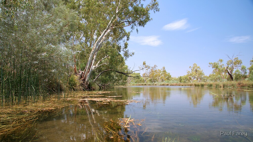 weeli wolli creek by Paul Farey