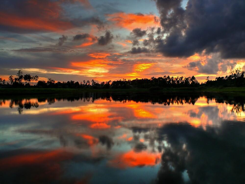When The Evening Comes by John E Adams