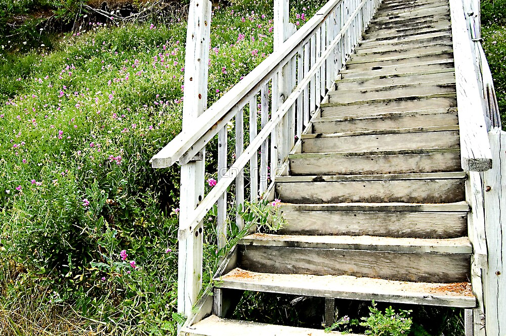 The Stairs by cherylc1