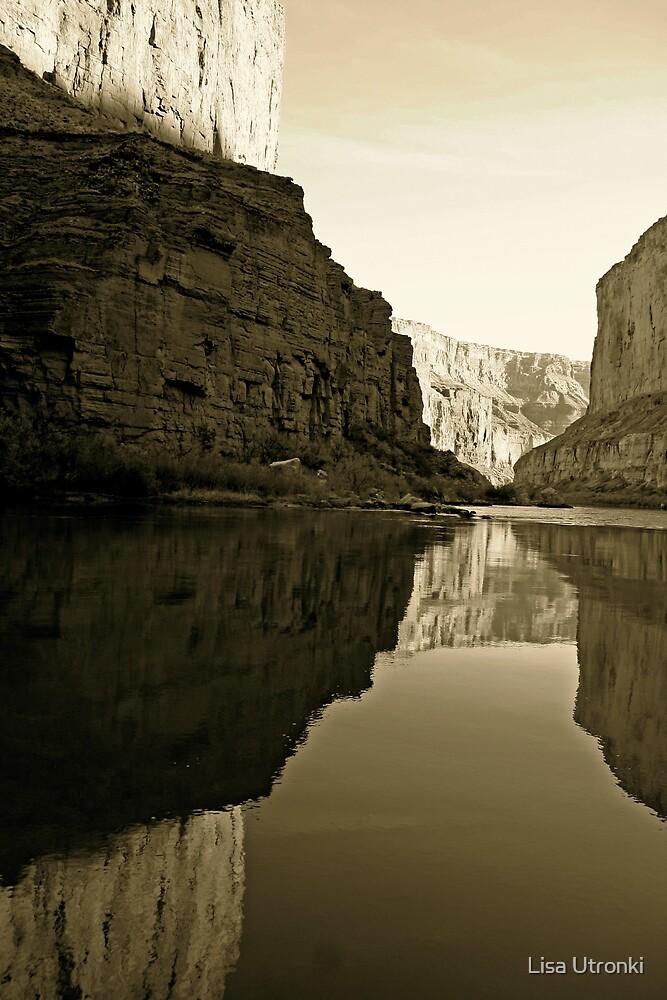 Grand Canyon  by Lisa Utronki
