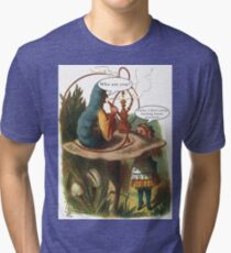 Alice and the Caterpillar Tri-blend T-Shirt