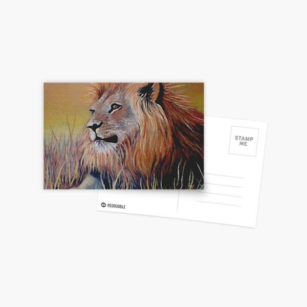 Lion Sitting in Grass Postcard