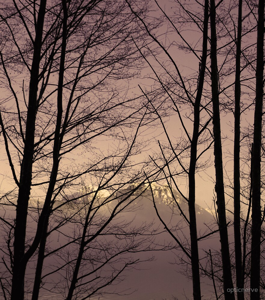 twig mountain by opticnerve