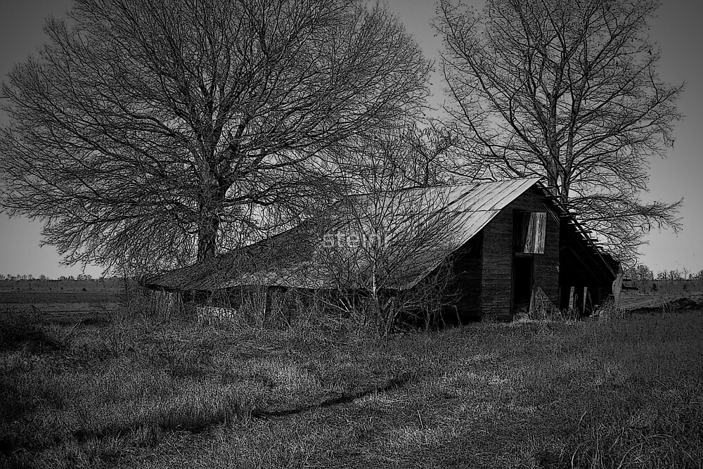 Old Barn_4341 by steini