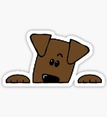 labrador retriever chocolate peeking Sticker